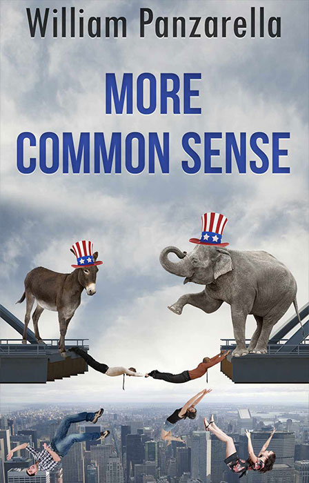 Book: More Common Sense